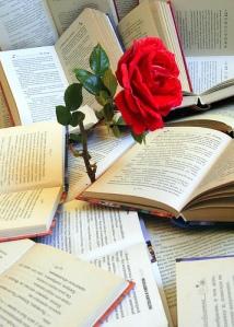 rosa-sant-jordi-llibres